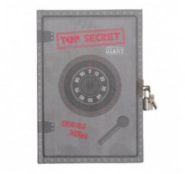 JOURNAL INTIME TOP SECRET