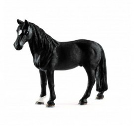 HONGRE TENNESSEE WALKER
